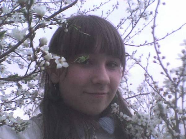 wiosna......kwiecień.......wiśnie......