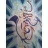 Moje GRAFFITI (dodane 28.09.2008)