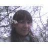 wiosna......kwiecień.......wiśnie...... (dodane 18.05.2008)